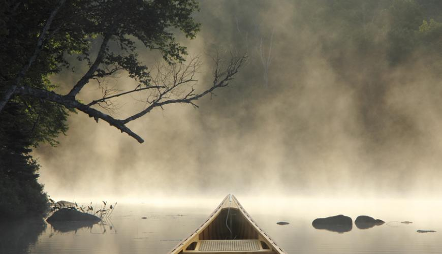Shore Road Allowance, What is it?