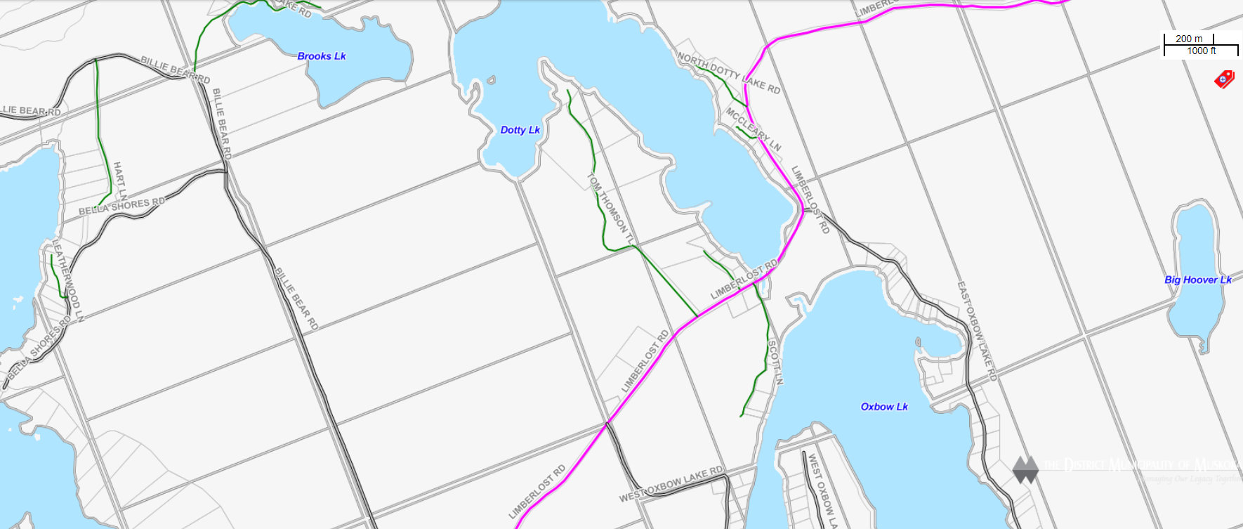 Cadastral Map Dotty Lake -  - Muskoka