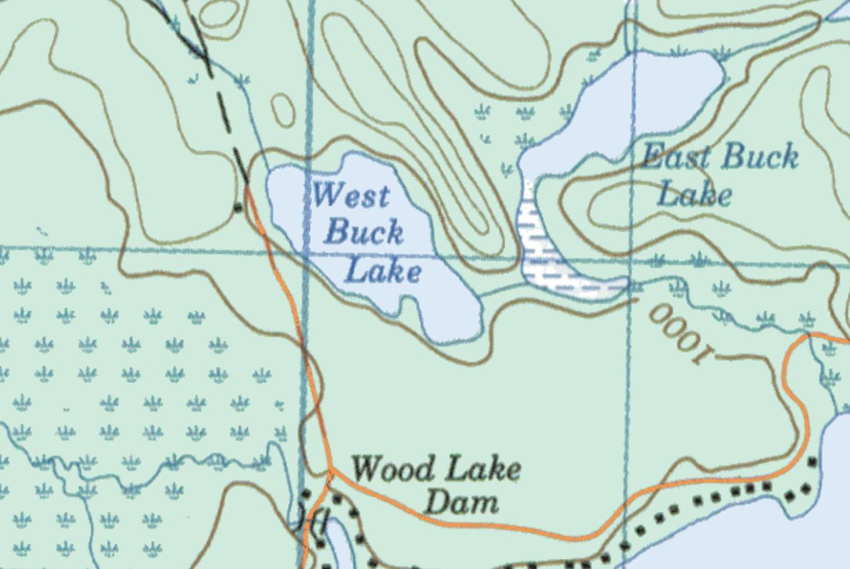 Topographical Map of West Buck Lake -