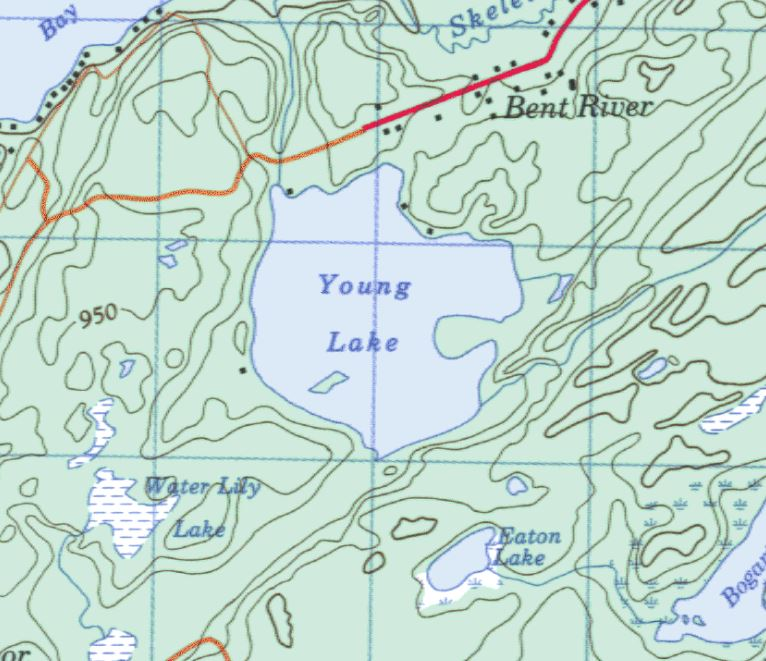 Topographical Map of Young Lake -