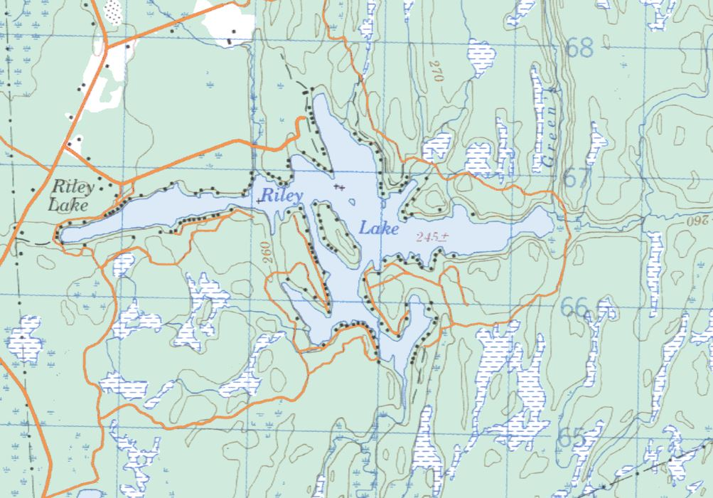 Topographical Map of Riley Lake -