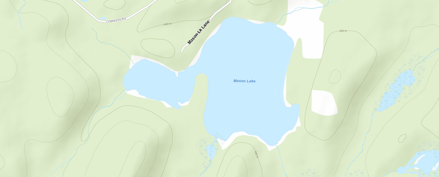 Mason Lake Cadastral Map - Mason Lake - Muskoka