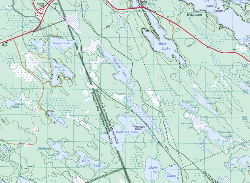 Topographical map of Cassidy Lake - Cassidy Lake