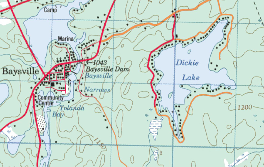 Dickie Lake Topographical Map - Dickie Lake
