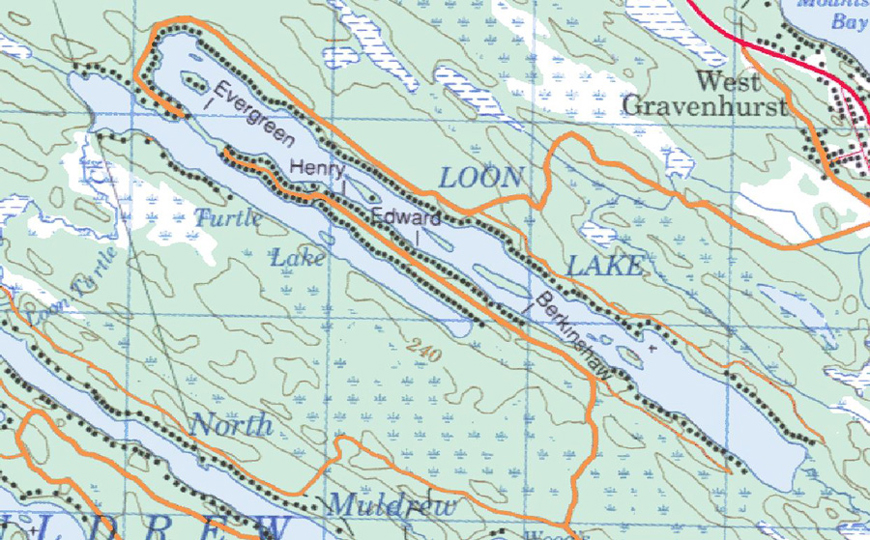 Topographical map of Loon Lake - Loon Lake