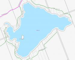 Cadastral Map of Pine Lake