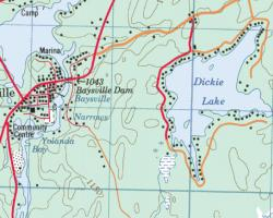 Dickie Lake Topographical Map
