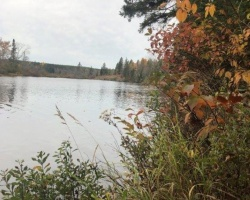 Cottage for Sale on Manitouwabing Lake