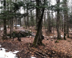 Property for Sale on Lot 41 Basshaunt (south) Road, Haliburton