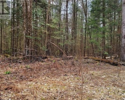 Property for Sale on 0 Gelert Road, Haliburton