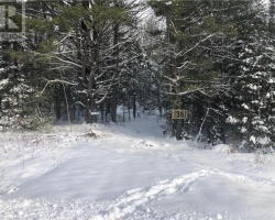 Property for Sale on 1381 Housey's Rapids Road, Gravenhurst
