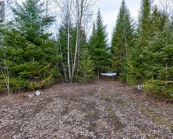 Property for Sale on Lot 35 Monck  Rd, Kawartha Lakes
