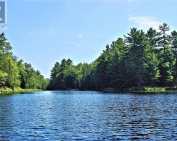 Cottage for Sale on De Bois Lake