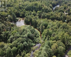 Cottage for Sale on Hollow River