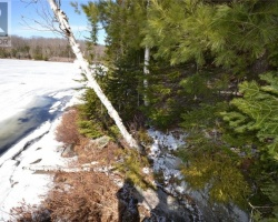 Property for Sale on - Salvatori Trail, Haliburton