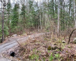 Property for Sale on N/a East Whalley Lake Road, Magnetawan