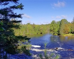 Cottage for Sale on Oxtongue River