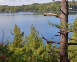 Cottage for Sale on Silver Lake