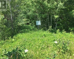 Property for Sale on Highway 124, Whitestone