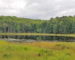 Property for Sale on 0 Angle Lake Rd, Lake of Bays