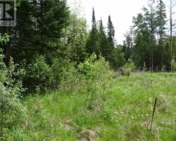 Property for Sale on - Chateau Place, Burnt River