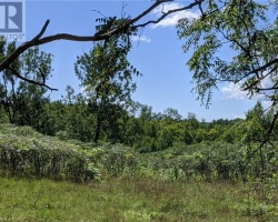Property for Sale on 00 White Lake Road, Kinmount